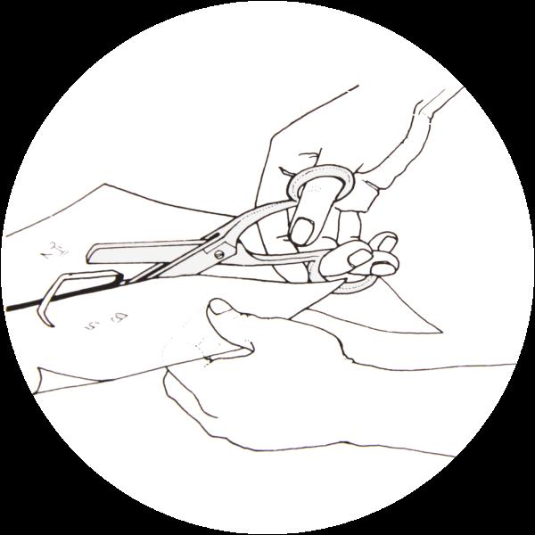 Arbeitstechnik Glasmalerei – Schablonieren
